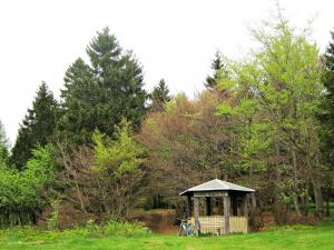 Schutzhütte-unterhalb-des-kieferle