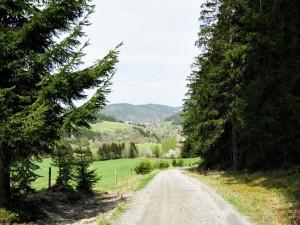 Das Grüne Band zwischen Lauenstein und Lichtenhain