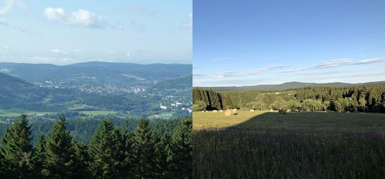 Berge-und-Wald