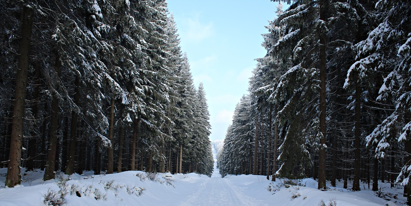 Winter in Thüringen